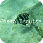 Costa Teguise Offline Map by hiMaps